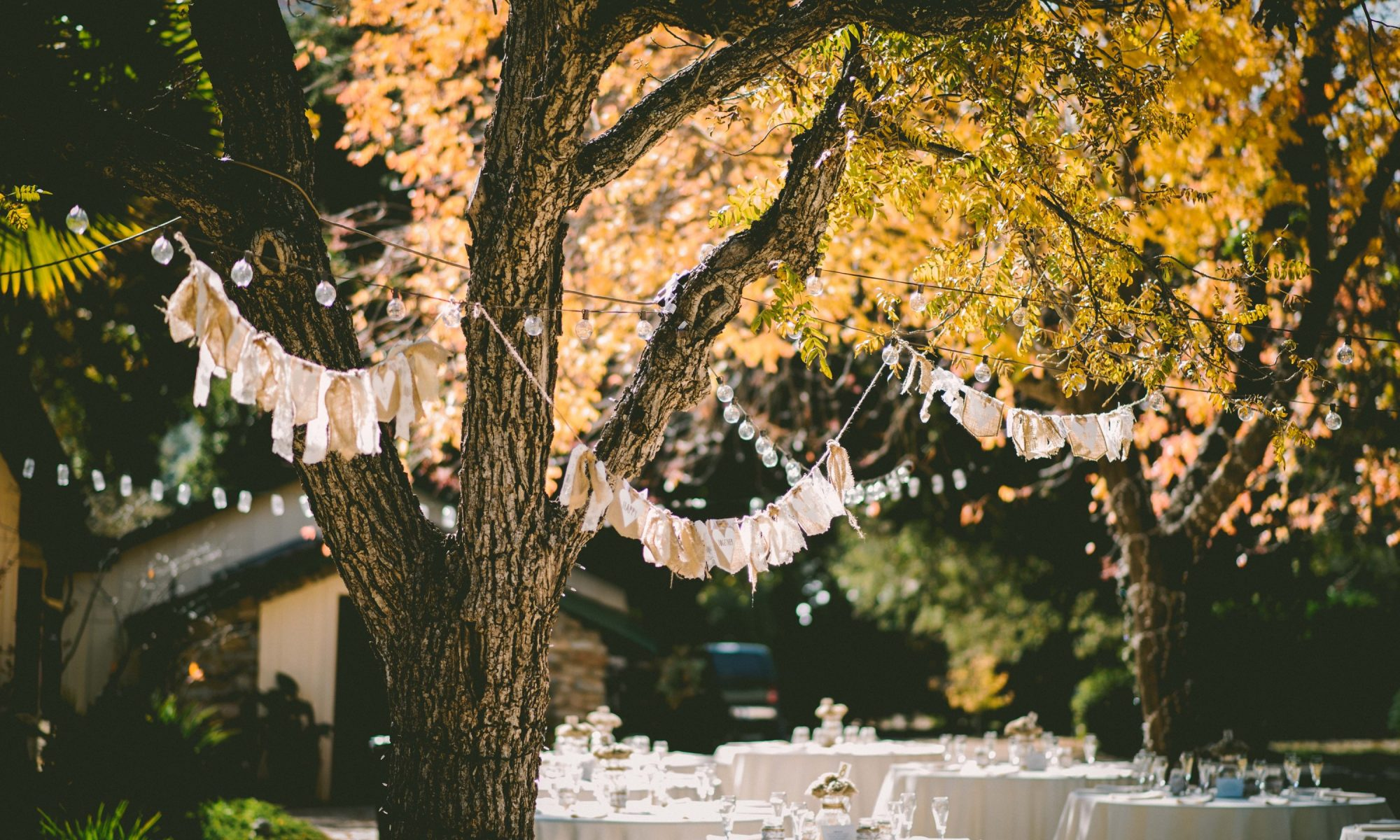Fairy lights and bunting in outdoor wedding reception